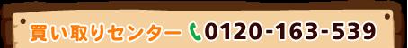 0120-163-539